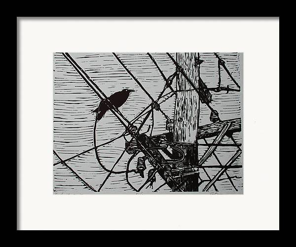 Bird Framed Print featuring the drawing Bird On A Wire by William Cauthern
