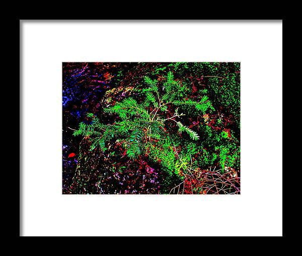 Landscape Framed Print featuring the photograph Brook Texture 88 by George Ramos
