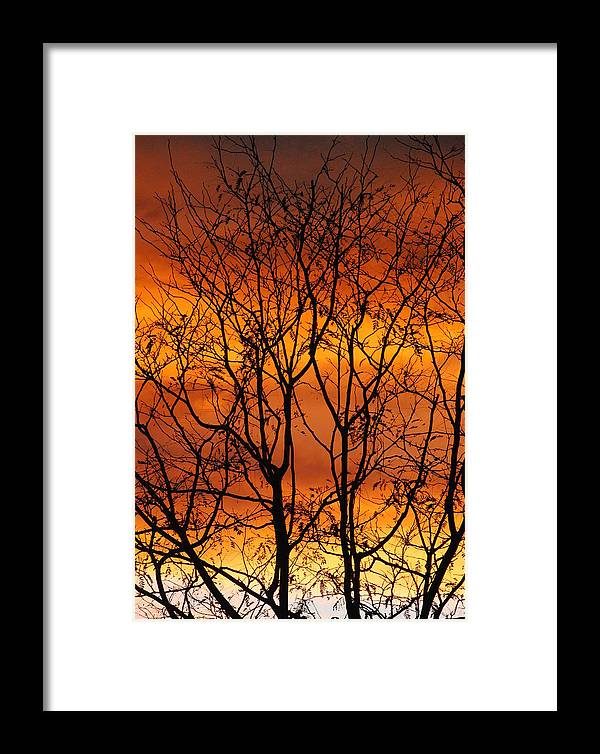 Autumn Framed Print featuring the photograph Burning Sky by Marcia Mello