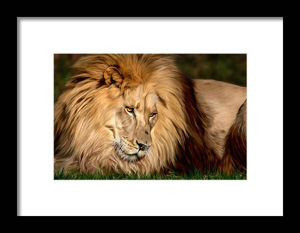 Cameron Framed Print featuring the digital art Cameron by Big Cat Rescue