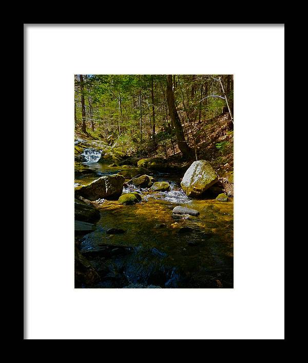Landscape Framed Print featuring the photograph Childs Brook 3 by George Ramos