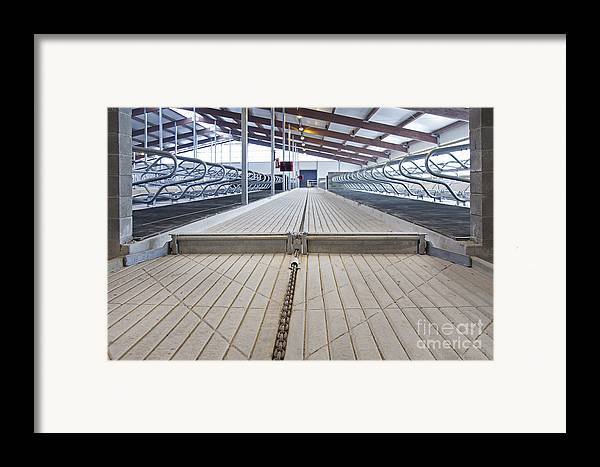 Agricultural Framed Print featuring the photograph Cowshed Dung Scraper by Jaak Nilson