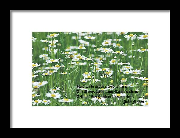 Daisy Framed Print featuring the photograph Daisy Fresh by Kristin Elmquist