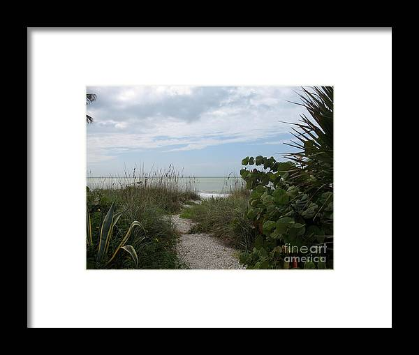 Dune Framed Print featuring the photograph Dune Landscape by Christiane Schulze Art And Photography