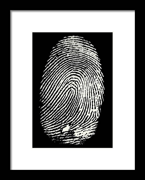 Fingerprint Framed Print featuring the photograph Enlarged Fingerprint by Sheila Terry