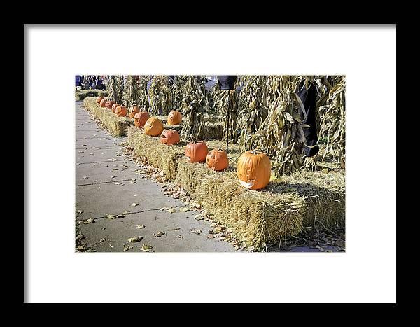 Autumn Framed Print featuring the photograph Fall Halloween On Tillson Street by LeeAnn McLaneGoetz McLaneGoetzStudioLLCcom