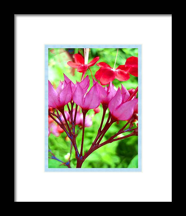 Flower Framed Print featuring the photograph Famiglia by Beto Machado