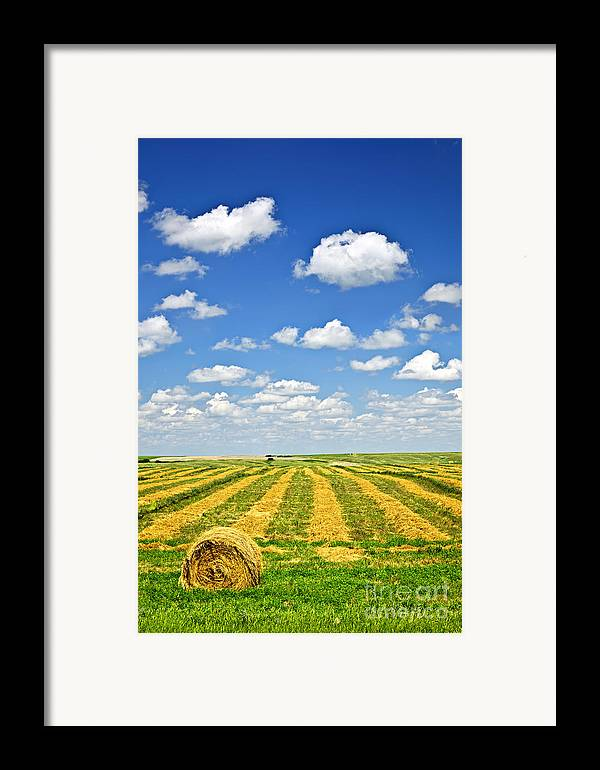 Agriculture Framed Print featuring the photograph Farm Field At Harvest In Saskatchewan by Elena Elisseeva