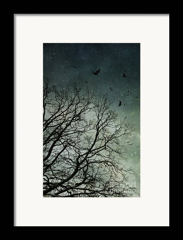 Atmosphere Framed Print featuring the photograph Flock Of Birds Flying Over Bare Wintery Trees by Sandra Cunningham