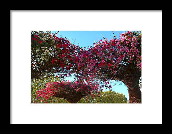 Getty Center Museum Garden Flowers Framed Print featuring the photograph Getty Center by Gwen C