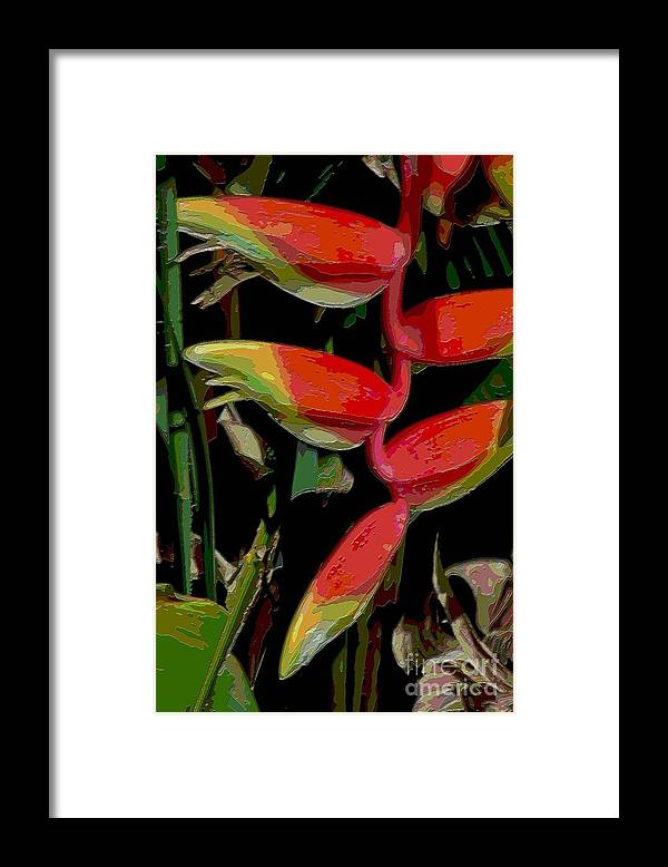 Digital Designs Framed Print featuring the photograph Heleconia by Mark Gilman