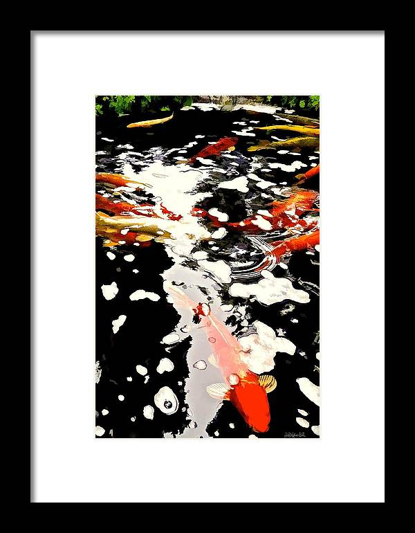 Nature Framed Print featuring the photograph Koi Pool by Brian D Meredith