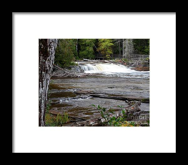 Michigan Upper Peninsula Framed Print featuring the photograph Lower Tahquamenon Falls Area by Steve Javorsky