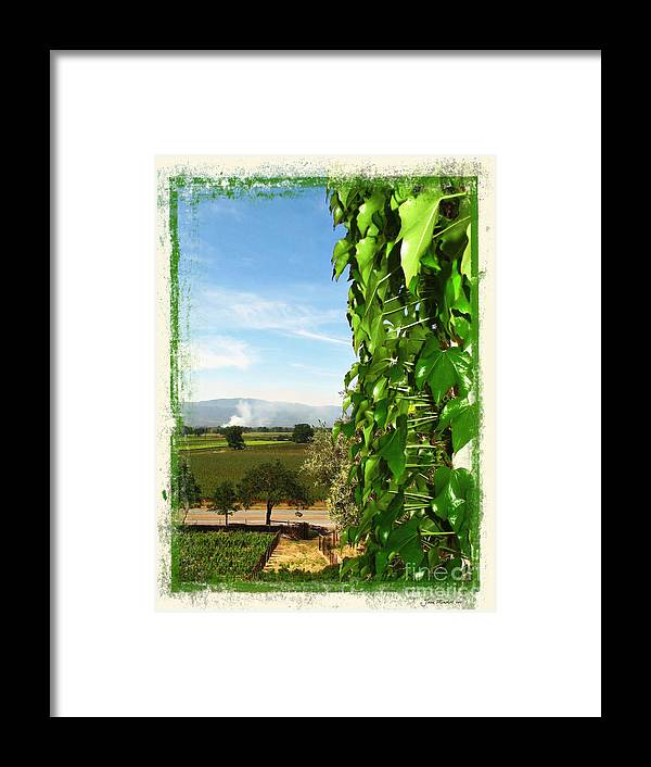 Napa Framed Print featuring the photograph Napa Looking Out by Joan Minchak
