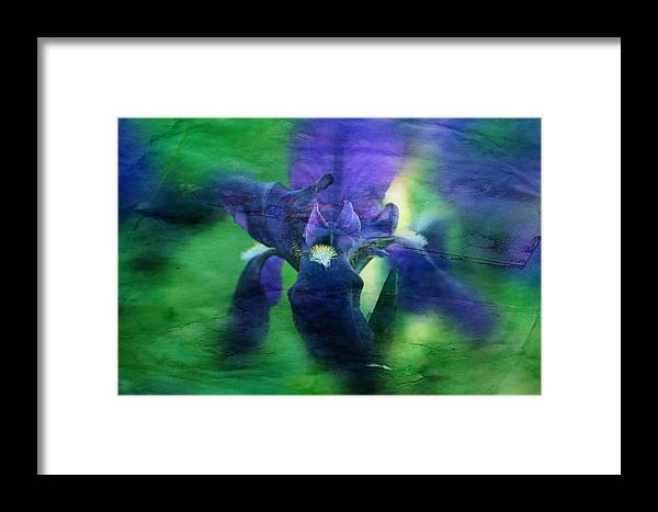 Flowers Framed Print featuring the photograph Poetic Iris by Toni Hopper