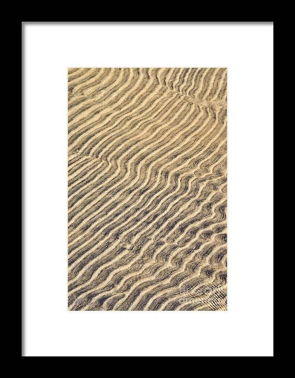 Sand Framed Print featuring the photograph Sand Ripples In Shallow Water by Elena Elisseeva