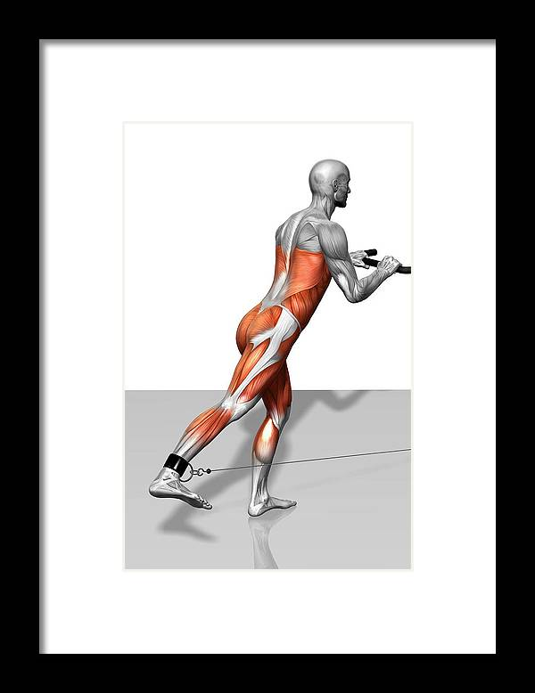 Vertical Framed Print featuring the photograph Skater Exercise by MedicalRF.com