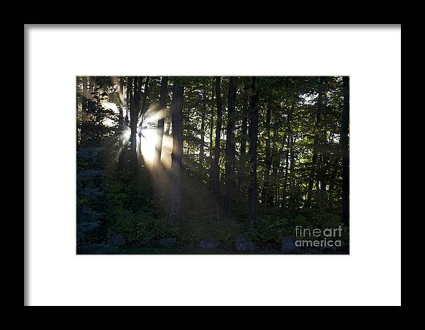 Morning Framed Print featuring the photograph Sunrise by Elaine Mikkelstrup