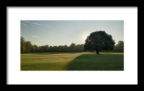 2011 Framed Print featuring the photograph Sunrise In The Park by Vinicios De Moura