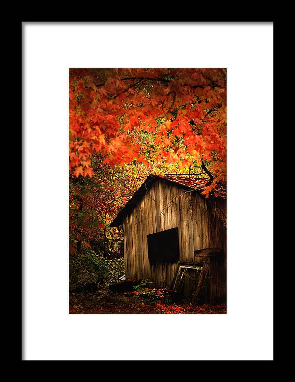 Wood Shed Framed Print featuring the photograph The Wood Shed by Randall Branham