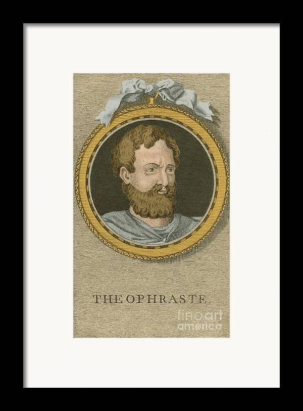 Philosophy Framed Print featuring the photograph Theophrastus, Ancient Greek Polymath by Science Source