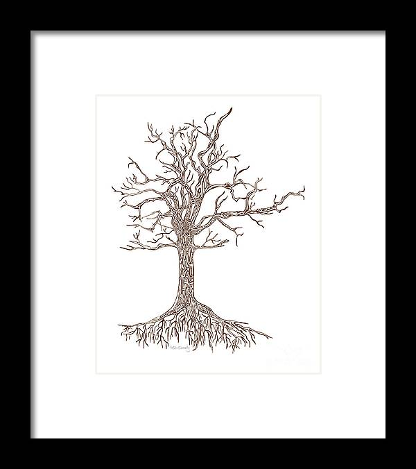 Tree Framed Print featuring the photograph Tree by HD Connelly