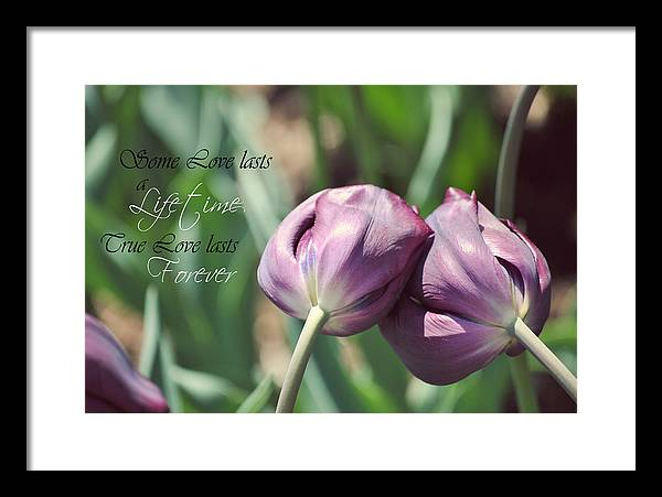 Oglbay Framed Print featuring the photograph True Love by April Hagedorn