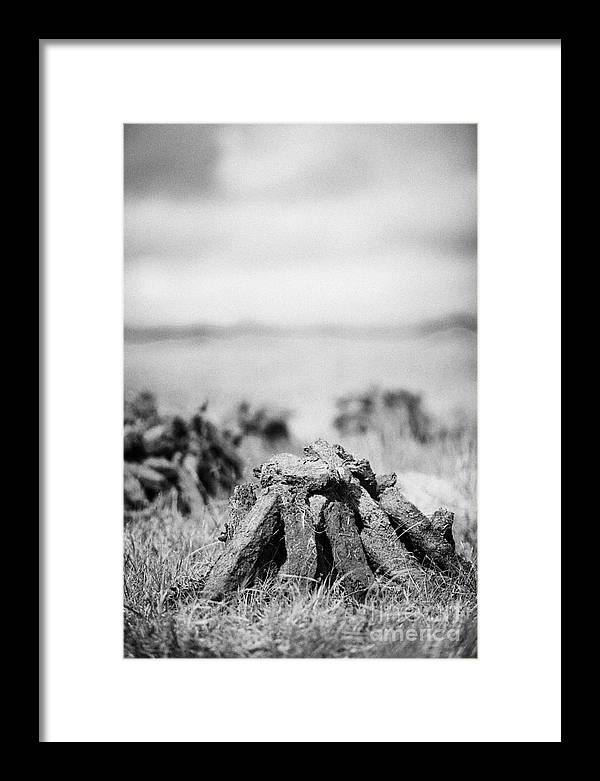 Republic Of Ireland Framed Print featuring the photograph Turf Peat Stacked For Drying On The Bog In Ireland by Joe Fox