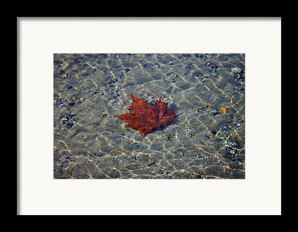 Abstract Framed Print featuring the photograph Under Water by Joana Kruse