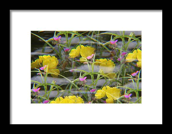 Flowers Framed Print featuring the photograph Waves by Rebecca Frank