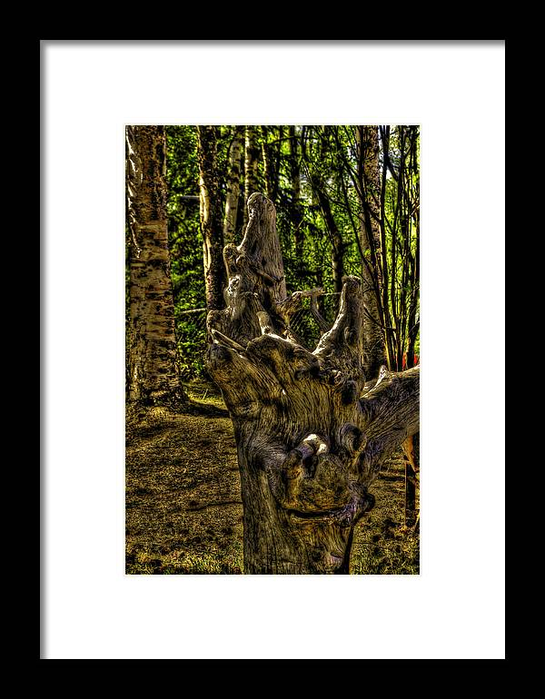 Spiritual Framed Print featuring the photograph Where Did The Gods Come From ?? by Grover Woessner