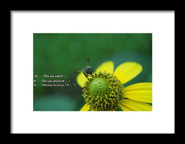 Framed Print featuring the photograph Flower For You by Gornganogphatchara Kalapun