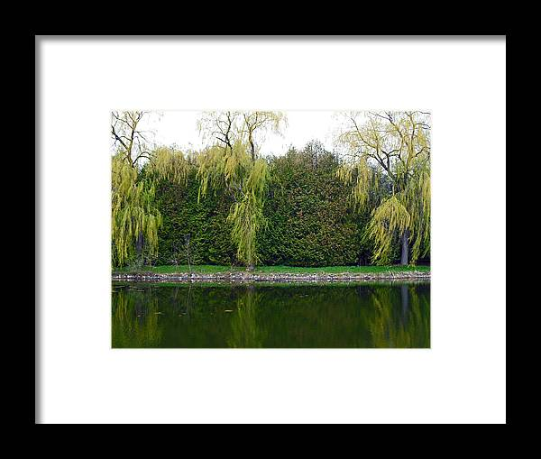 Willow Pond B&b Framed Print featuring the photograph Willow Pond B And B by Cyryn Fyrcyd