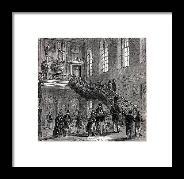 19th Century Framed Print featuring the photograph 1830 Montagu House Natural History Museum by Paul D Stewart