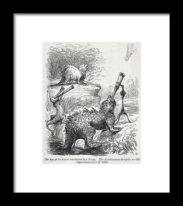 1861 Framed Print featuring the photograph 1861 Punch Dinosaurs & Comet Cartoon by Paul D Stewart