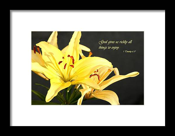 Scripture Framed Print featuring the photograph 1st Timothy Flower by Mike Lytle