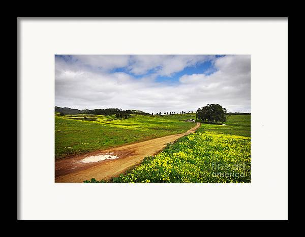Autumn Framed Print featuring the photograph Countryside Landscape by Carlos Caetano