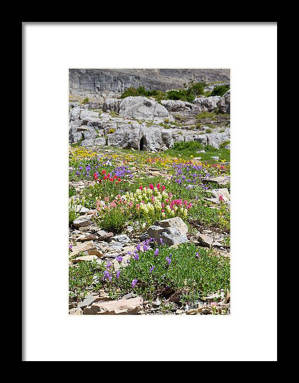 Big Sky Country Framed Print featuring the photograph Mother Nature's Master Garden by Katie LaSalle-Lowery