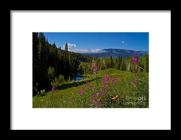 Altitude Framed Print featuring the photograph Ohio Creek Valley Colorado by Crystal Garner