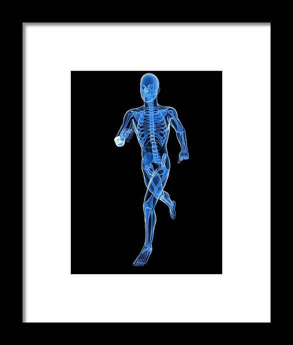 Artwork Framed Print featuring the photograph Running Skeleton, Artwork by Sciepro