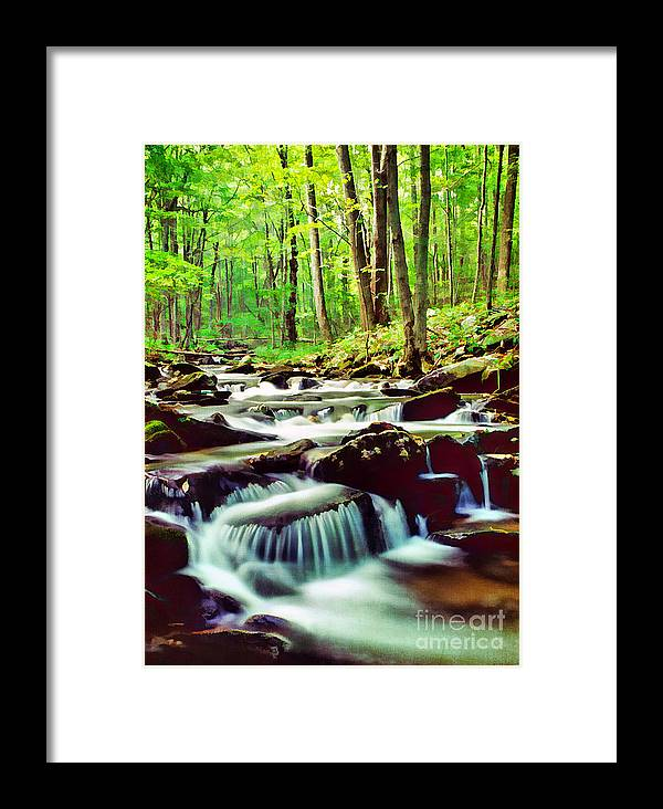 Autumn Framed Print featuring the photograph Solitude by Darren Fisher