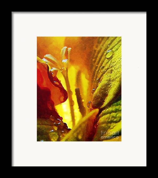 Odon Framed Print featuring the painting The Pistils by Odon Czintos