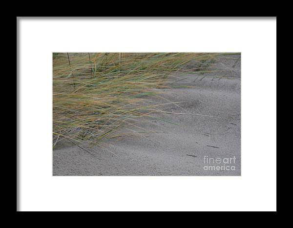 Hurricane Framed Print featuring the photograph Hurricane Sandy by Randy J Heath