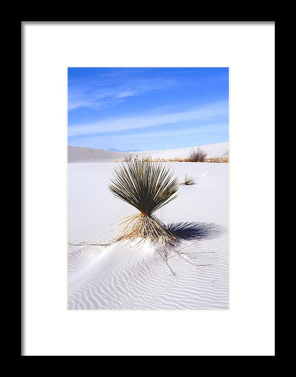 Landscape Framed Print featuring the photograph White Sands by Larry Gohl