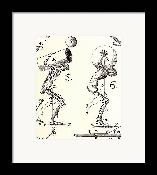 Anatomy Framed Print featuring the photograph Biomechanics by Science Source