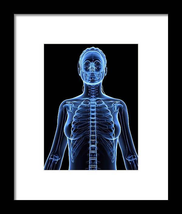 Vertical Framed Print featuring the digital art Female Upper Body, Artwork by Sciepro