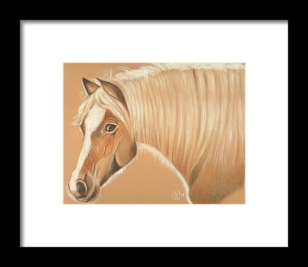 Horse Framed Print featuring the painting Halfie by Stephanie L Carr