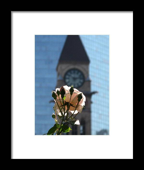 Toronto Framed Print featuring the photograph Nature With Architecture by Alfred Ng