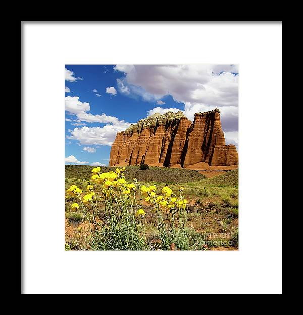 Capitol Reef National Park Framed Print featuring the photograph Capitol Reef National Park by Southern Utah Photography