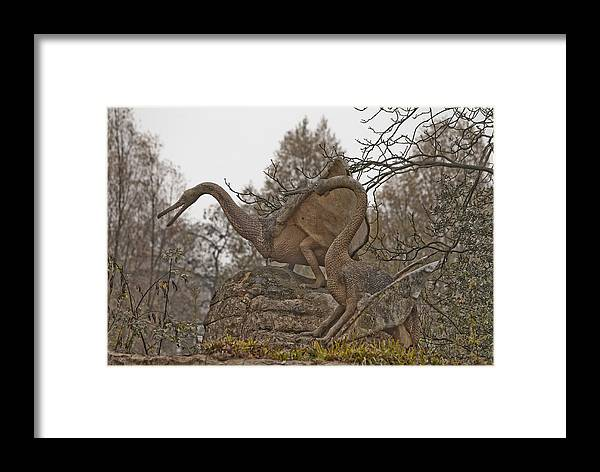 Dinosaur Framed Print featuring the photograph Dinosaur by Dawn OConnor
